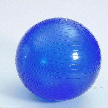 Obrázek Gymnastický míč 65 cm - modrý