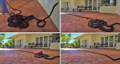 Obrázek z Smršťovací zahradní hadice Profi 22,5 m
